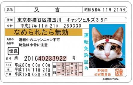 なめ猫免許書